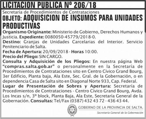 Licitación: Licitacion Publica 206 SGG MG