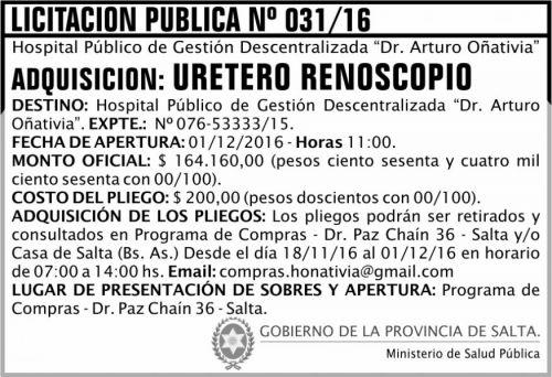 Licitación: Licitación Pública Nº 031/16