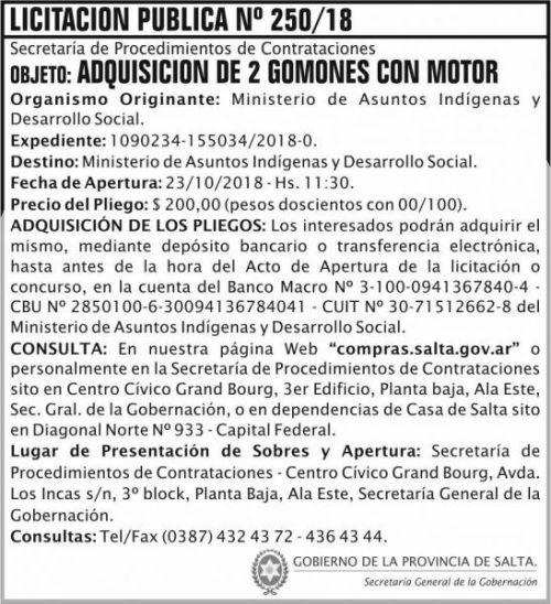 Licitación: Licitacion Publica 250 SGG MAIDC 2x8