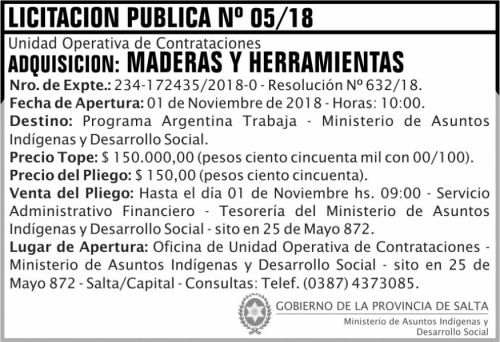 Licitación: Licitacion Publica 05 MAIDS 2x5