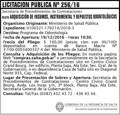 Licitación: Licitación Pública Nº 256/16