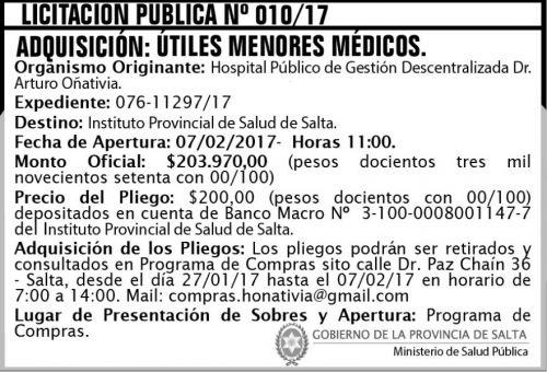 Licitación: Licitación Pública Nº 010/17