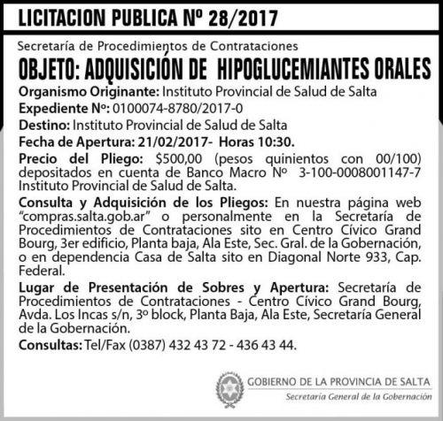 Licitación: Licitación Pública Nº 28/2017
