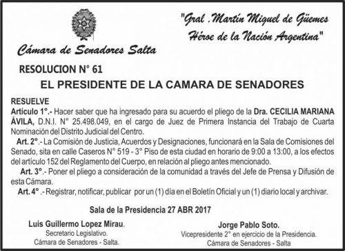 Edictos / Comunicados: CAMARA DE SENADORES SALTA - RES. 61