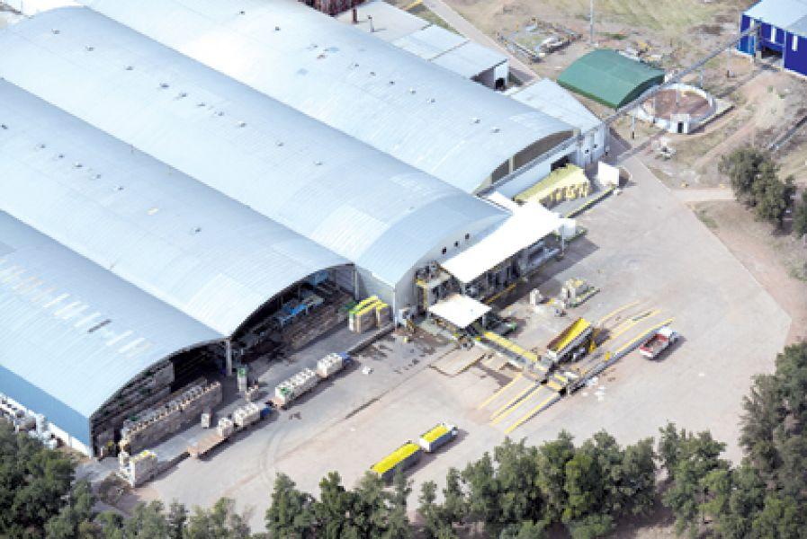 La Finca La Moraleja es una de las principales empresas proveedoras de jugo concentrado de limón para Sprite en Argentina.