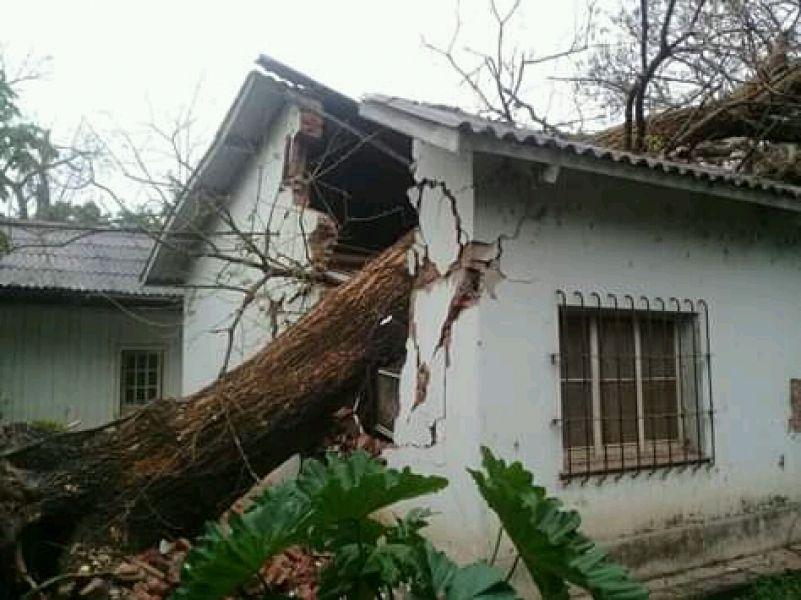 Fuertes vientos huracanados, que provocaron la caída de techos y de árboles de gran porte.