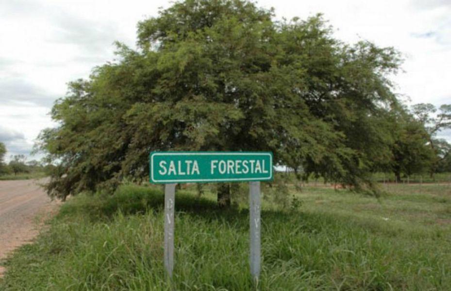 La pareja de jóvenes fue encontrada ayer a la madrugada en el predio de Salta Forestal por el padre de uno de ellos.