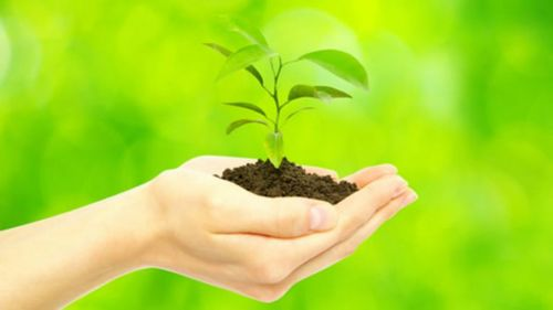 Autoridades ambientales y sus equipos técnicos debatirán sobre las diferentes metodologías de educación ambiental.