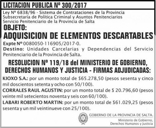 Licitación: Licitacion Publica Adjudicada 300 S