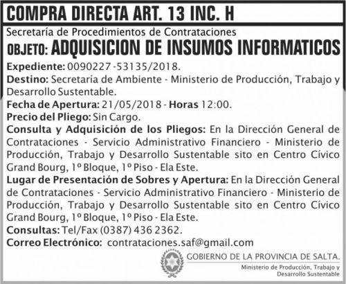 Licitación: Compra Directa art 13