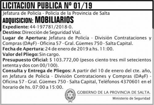 Licitación: Licitacion Publica 01 JP Policia MS  2x5 ND