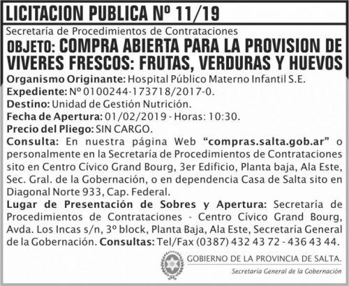 Licitación: Licitacion Publica 11 SGG HPMI 2x6 ND (1)