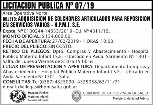 Licitación: Licitación Publica 07/19