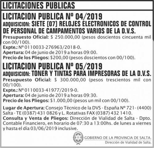 Licitación: Licitaciones 4 y 5 DVS