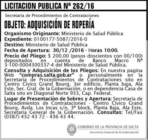 Licitación: Licitación Pública Nº 262/16