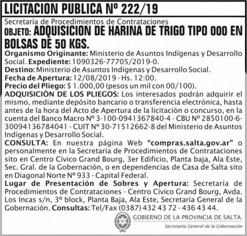 Licitación: Licitacion Publica 222 SGG MAIDS