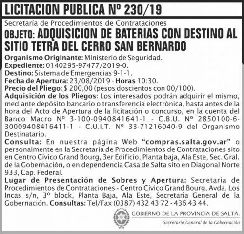 Licitación: Licitacion Publica 230 SGG MS