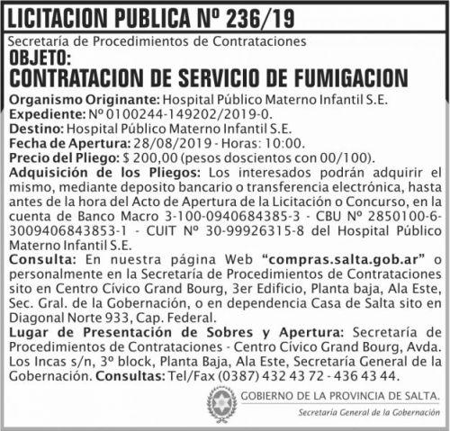 Licitación: Licitacion Publica 236 SGG HPMI