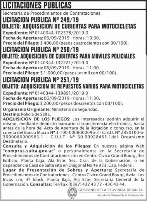 Licitación: Licitaciones Publicas 249 250 251 SGG MAIDS