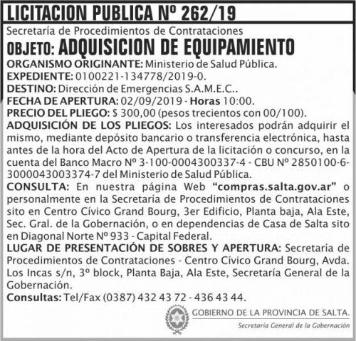 Licitación: Licitacion Publica 262 SGG MSP