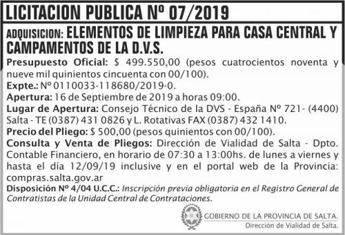 Licitación: Licitación Publica 07 DVS