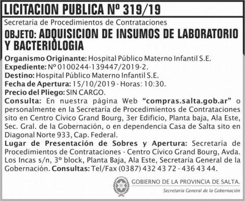 Licitación: Licitacion Publica 319 SGG HPMI