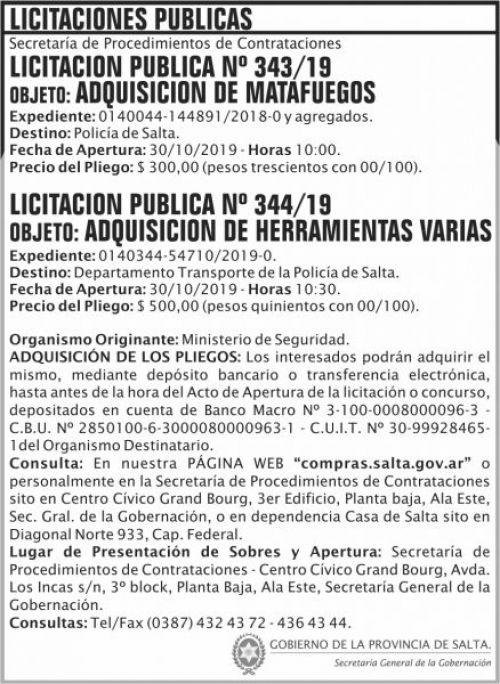 Licitación: Licitacion Publica 343 y 344 SGG MS