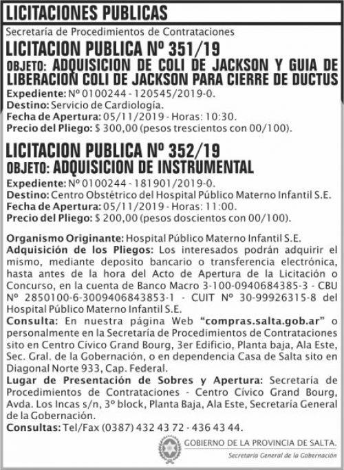 Licitación: Licitacion Publica 351 y 352 SGG HPMI