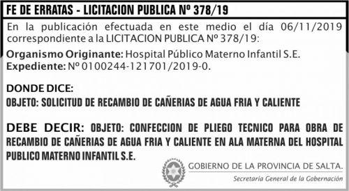 Licitación: Fe errata Licitacion Publica 378 SGG HPMI