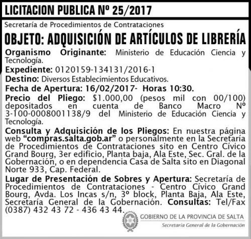 Licitación: Licitación Pública N° 25/2017