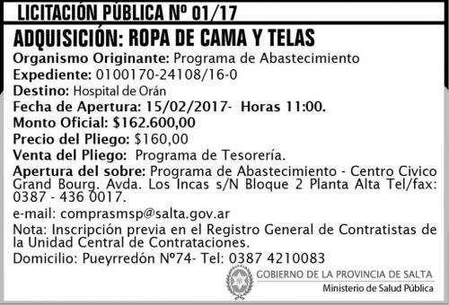 Licitación: Licitación Pública Nº 01/17