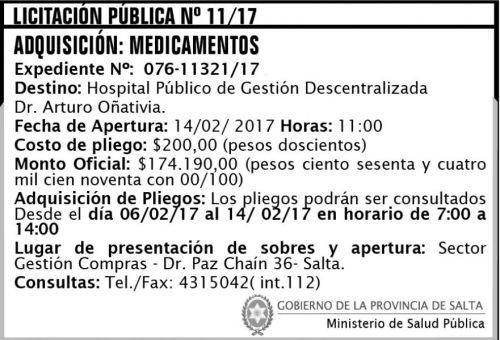 Licitación: Licitación Pública Nº 11/17