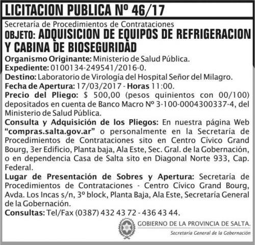 Licitación: Licitacion Publica 46 SGG MSP