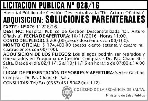 Licitación: Licitación Pública Nº 028/16