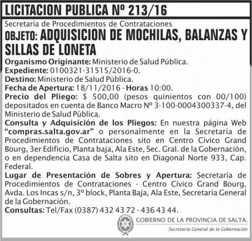 Licitación: Licitación Pública Nº 213/16