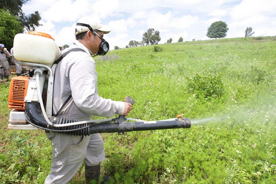 Por el uso de pesticidas un finquero de Güemes fue imputado por tentativa de homicidio. Por este mismo hecho ya falleció una persona.