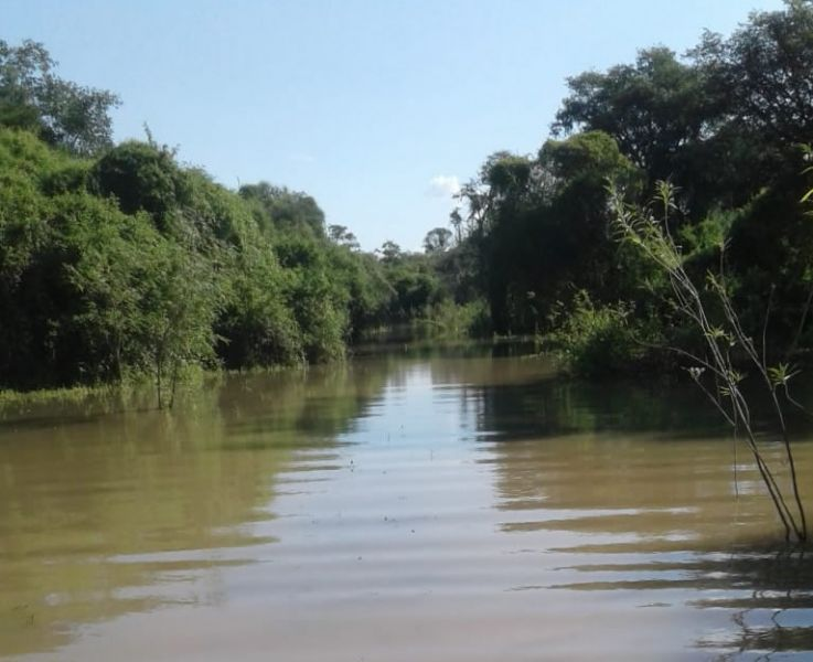 Ayer hubo preocupación de pobladores por el caudal del Bermejo que había avanzado en algunas zonas de Rivadavia. (Foto: Brian Zalazar).