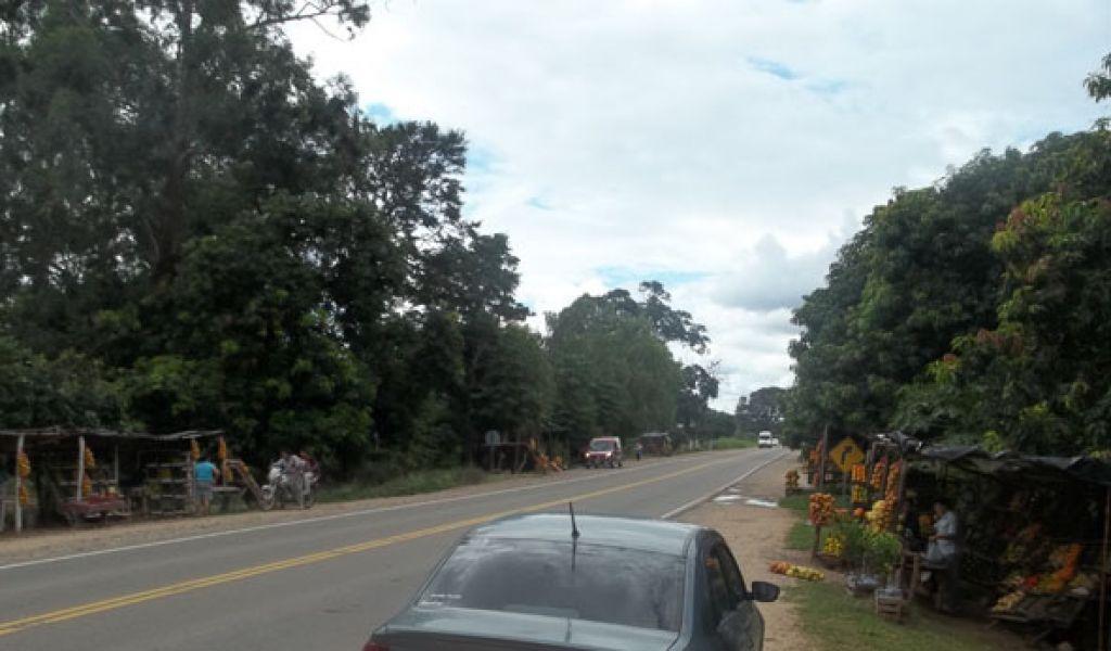 La ruta camino a las termas de Rosario de la Frontera, donde ocurrió el accidente fatal con un ciclista.