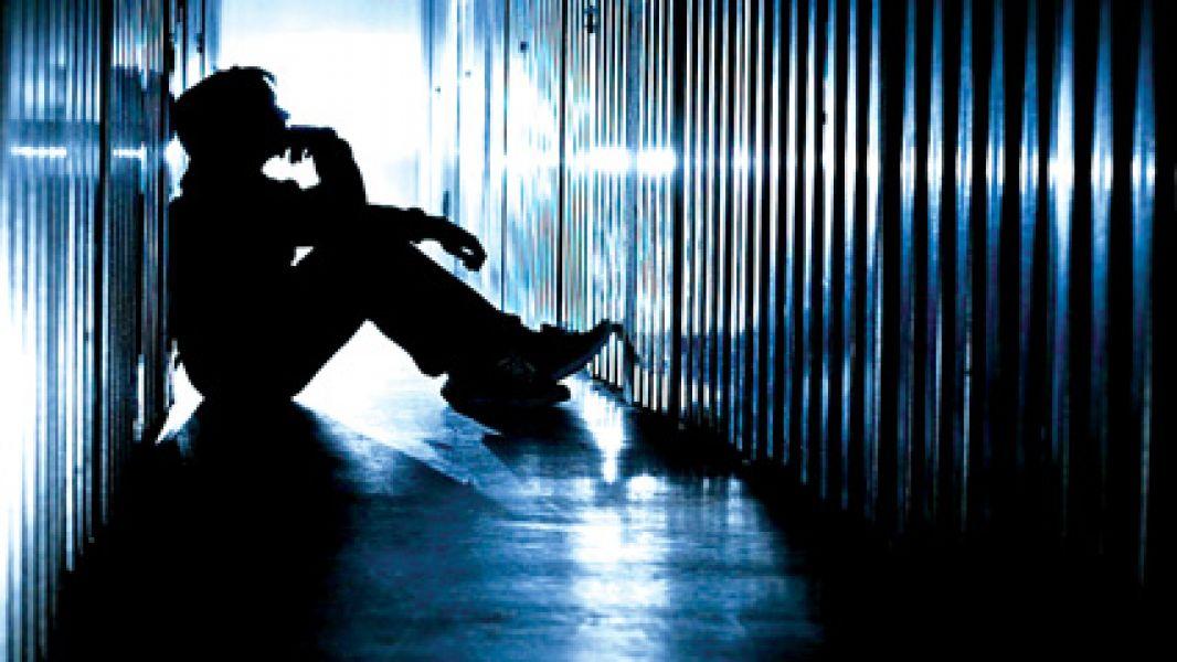 En 15 días avanzarán en la creación del Programa de Prevención, Detección y Asistencia para personas con riesgo de suicidio.
