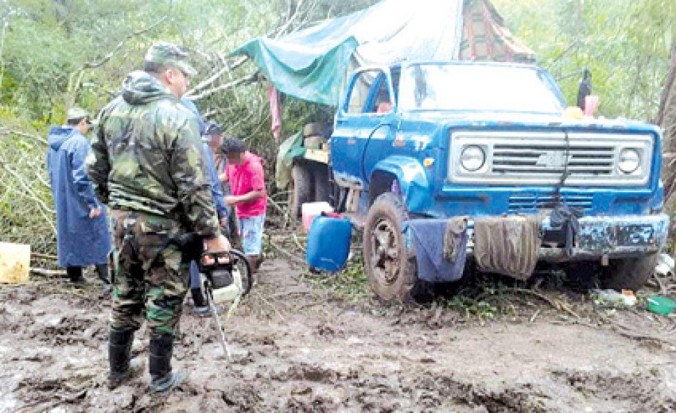 Los hombres que talaban árboles en Campo Durán estaban provistos de motosierras y ya tenían postes de cebil acopiado.
