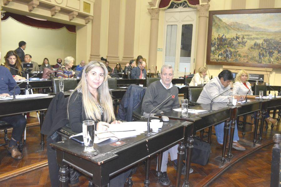 Navarro y Sández en Diputados criticaron el acuerdo con una Asociación, Yarade, y el intendente de Rosario de la Frontera, Gustavo Solís.