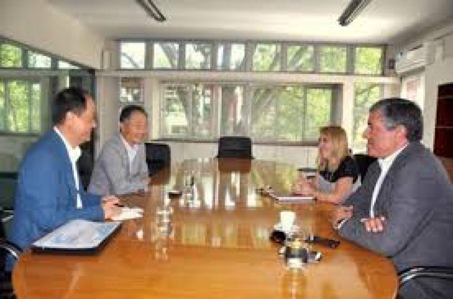 Inversores coreanos.