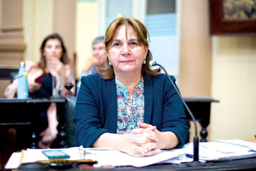 Norma Lizárraga, diputada por Orán del bloque Cambiemos-PRO, que impulsa la la creación del defensor del Docente.