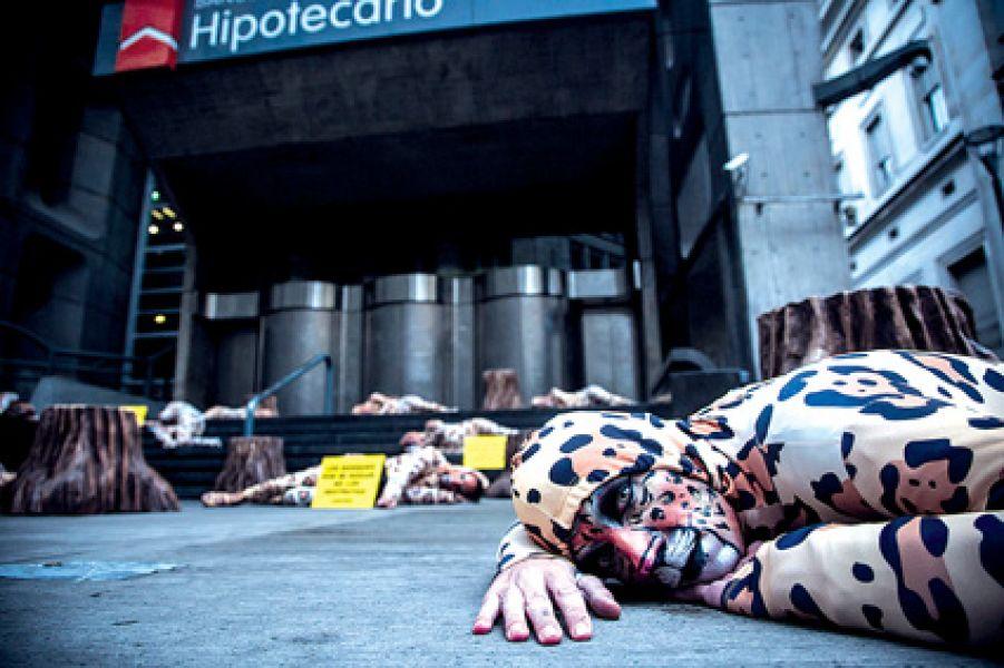 Banco Hipotecario forma parte de CRESUD, una de los grupos que desmonta en Salta y explota las tierras fiscales de Salta Forestal.