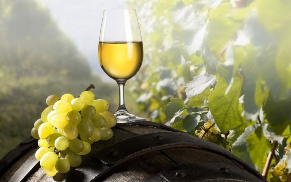 Varios días de celebraciones en la capital de Salta, Cachi y Cafayate, por el vino torrontés la cepa más caracterizada de nuestra región.