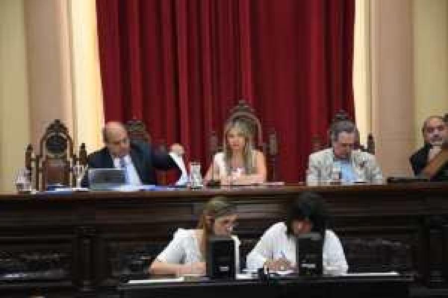 La sesión en un momento fue presidida por la senadora Silvina Abilés.